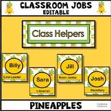 Classroom Jobs Set-Up Editable - Pineapple Theme
