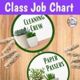 Classroom Jobs   Succulents