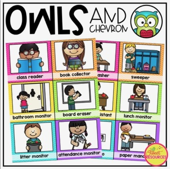 Classroom Jobs {Owls and Chevron Decor Theme}
