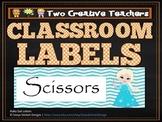 Classroom Labels Frozen Theme