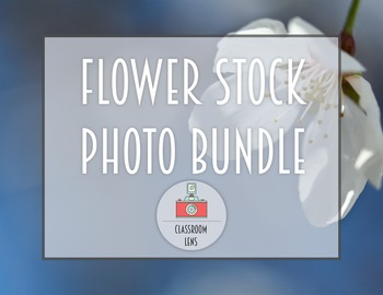 Classroom Lens Stock Photos - Flower Photo Bundle