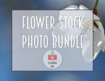 Classroom Lens Stock Photos - Flower Photo Bundle