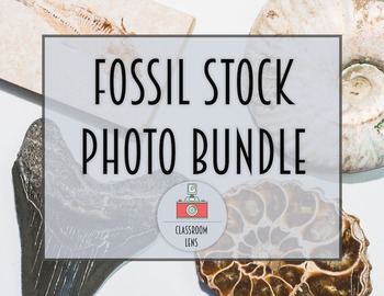 Classroom Lens Stock Photos - Fossil Bundle