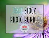 Classroom Lens Stock Photos - Free Bundle
