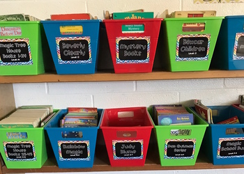 Classroom Library Bin Labels! PLUS Genre Posters