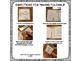 Classroom Management and Procedure Book Tool: Craftivitiy