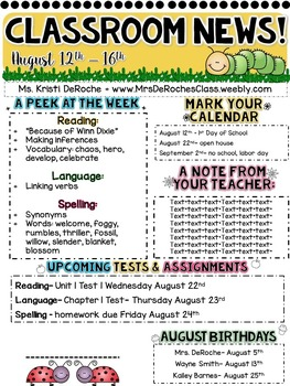 Classroom Newsletter- EDITABLE- Insect