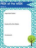 Classroom Newsletter Template - Free