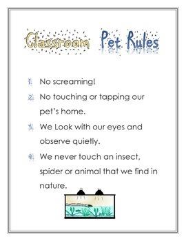 Classroom Pet Rules