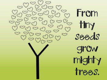 Classroom Poster - From Small Seeds Grow Mighty Trees