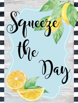 Classroom Poster / Wall Art - (Squeeze the Day)
