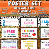 Classroom Posters / Motivational Posters  APT-001