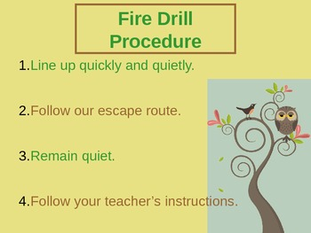 Classroom Procedures Powerpoint with Owl Theme