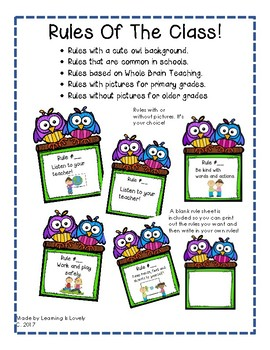 Classroom Rule Posters: Cute Owl Graphics: With and Without Picture Cues