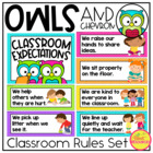 Classroom Rules Display in Owls and Chevron Classroom Decor Theme {EDITABLE}