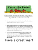 Classroom Rules Activity