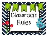 Classroom Rules- Chevron and Birds
