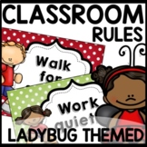 Ladybug Theme Classroom Rules