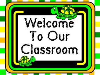 Classroom Set- Turtles
