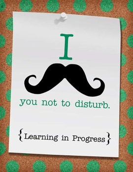 Do Not Disturb Classroom Signs and Posters