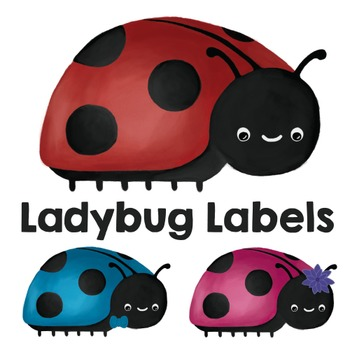 Ladybug Classroom Stationery Labels / Stickers