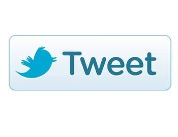 Classroom Theme- Twitter