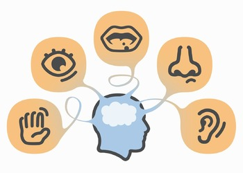Classroom Visuals: Critical Thinking