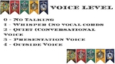 Classroom Voice Level Sign (Harry Potter)