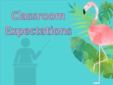 Classroom expectations and Champs rule/Pineapple and Flami
