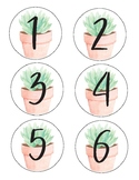 Clay Pot Succulent Numbers
