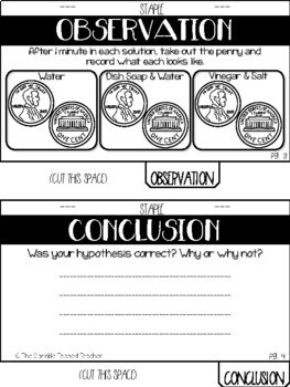 Clean a Penny Scientific Method Experiment Tab Book