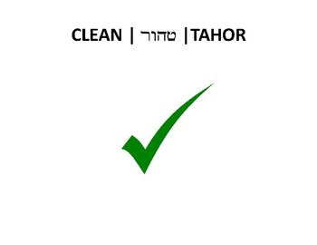 Clean and unclean sorting game - Torah Portion Vayikra 11