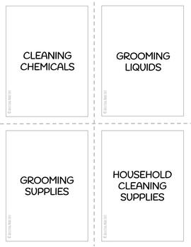 Cleaning & Grooming Visual Life Skills Flashcards for Special Education
