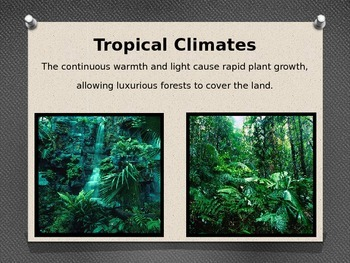 Climate Zones Powerpoint