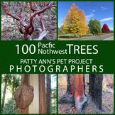 TREES Pacific Northwest Clip Art * 100 Photographs: Foliag
