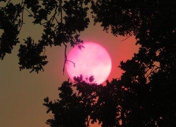 NATURE Clip Art * 125 Photographs SUN & MOON Reflections, Sunsets & Rainbows!