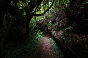 Trails & Paths Clip Art * 150 Photograph Jpegs: Metaphor 4 Human Life Journey!