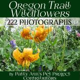 Native Wildflowers Clip Art * 222 Jpeg Photographs Oregon