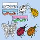 Insect and Spider Clip Art - 45 Color and Black Line Clips