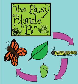 {Clip Art} Butterfly Life Cycle!
