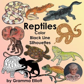 Fish Amphibians and Reptiles - Semi - Realistic Clip Art
