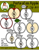 Clip Art: Parts of an Apple (for creating 3-Part Cards & other resources)