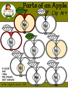 Clip Art: Parts of an Apple (for creating 3-Part Cards & o