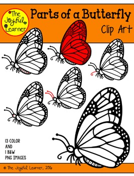 Clip Art: Parts of a Butterfly (for creating 3-Part Cards & other resources)