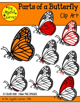 Clip Art: Parts of a Butterfly (for creating 3-Part Cards