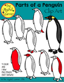 Clip Art: Parts of a Penguin (clip art for making Montessori 3-part cards, etc.)