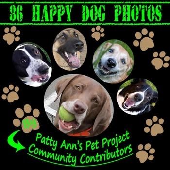 ClipArt *86 Original Photographs of HAPPY DOGs ~All Proceeds to  Animal Rescues!