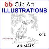 Animal Art Activities