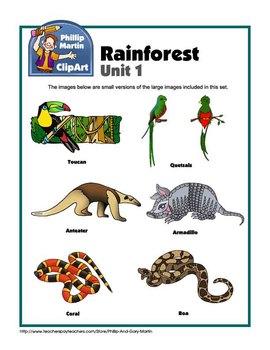 Clip Art Rain Forest Unit 1