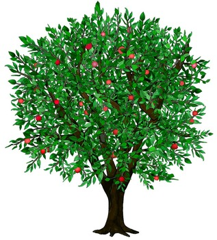 Clip Art Seasons of an Apple Tree by Thematic Teacher | TpT